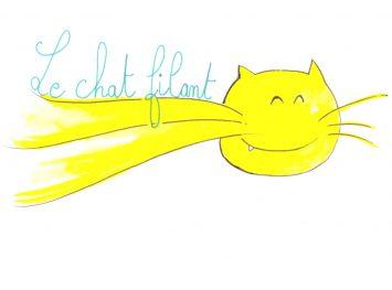 ©le chat filant