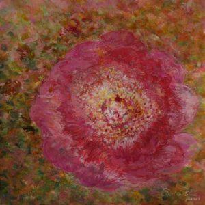 Rose ancienne (32,5x32cm)