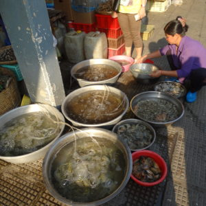 Les activités marchandes des rues de Phnom Penh