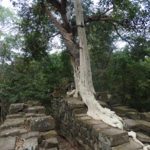 Sur la route des temples entre Chau Say Tevoda et Ta Keo
